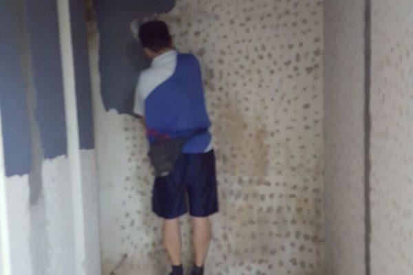 wall-reno-1